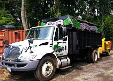 Safe Tree Removal Services Baltimore